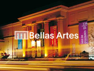 Portafolio cliente museo de bellas artes